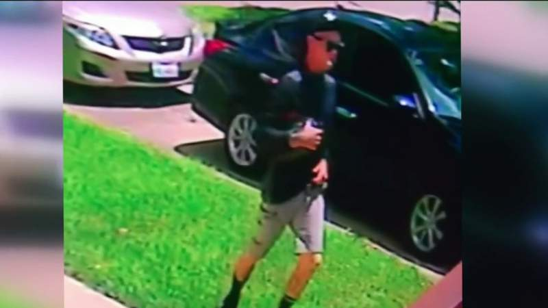 Purse snatching leads to car theft