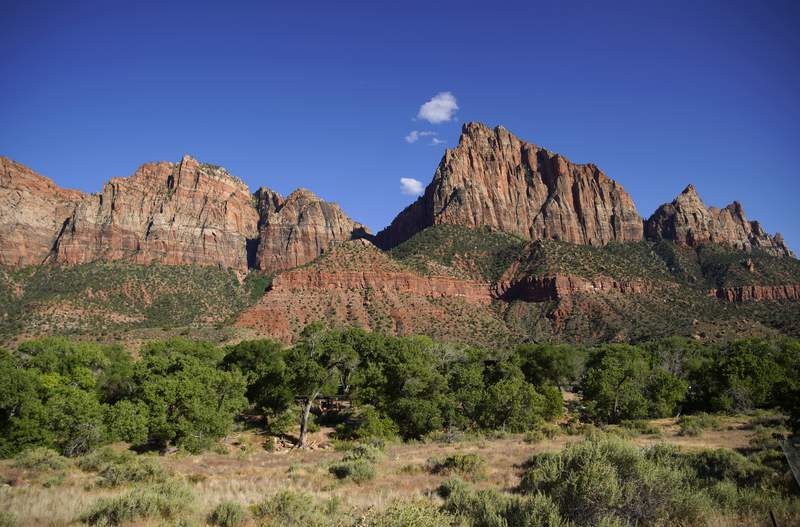 The evening sun lights the Watchman Tower formation at the  entrance to Zion National Park on May 14, 2020 in Springdale, Utah.