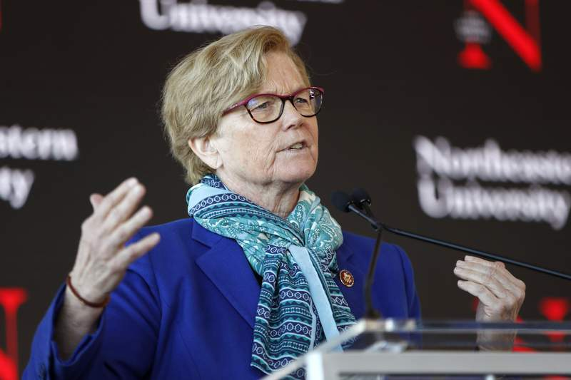 FILE - In this Jan. 27, 2020, file photo, Rep. Chellie Pingree, D-Maine, speaks a news conference in Portland, Maine. At least 4,800 chicks shipped to Maine farmers through the U.S. Postal Service have arrived dead in the recent weeks since rapid cuts hit the federal mail carrier's operations, Pingree said. Pingree is raising the issue of the dead chicks and the losses farms are facing in a letter to Postmaster General Louis DeJoy and U.S. Department of Agriculture Commissioner Sonny Perdue, The Portland Press Herald reported Wednesday, Aug. 19. (AP Photo/Robert F. Bukaty, File)