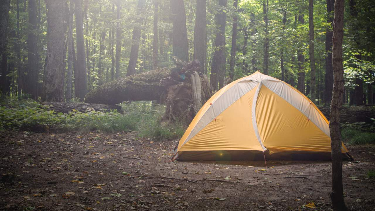 Ask 2 When Will Overnight Camping Begin Again At Texas State Parks