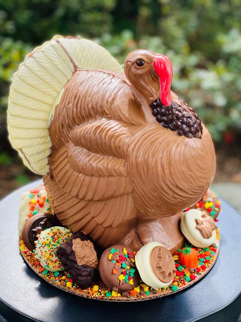 Chocolate Turkey