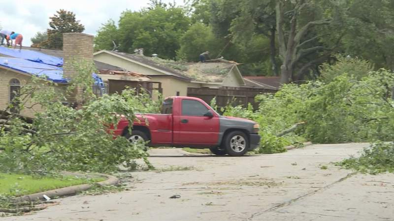 Heavy Rain and Strong Winds Cause Downed Trees