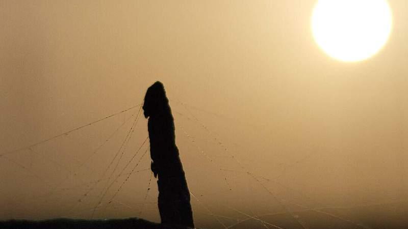 Saharan dust arrives in Houston