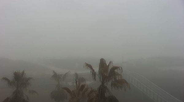 Dense Fog Advisory until noon