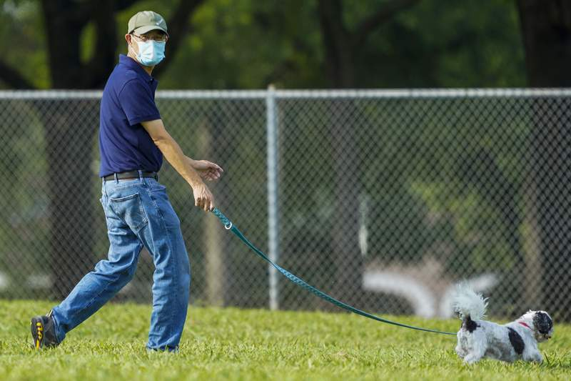 Jeff Ho wears a face mask while walking his dog at Custer Park on Thursday, July 2, 2020, in Richardson, Texas. Gov. Greg Abbott ordered that residents in most counties in the state wear face coverings in public beginning Friday at noon as cases of the coronavirus surge. (Smiley N. Pool/The Dallas Morning News via AP)