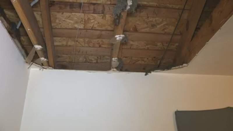 Frozen pipes bursting in homes