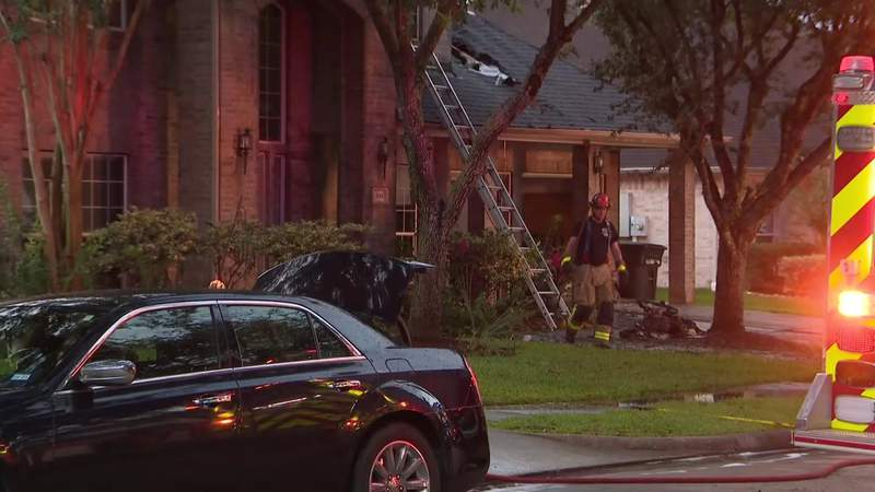 Pets die in League City home after lightning sparks fire