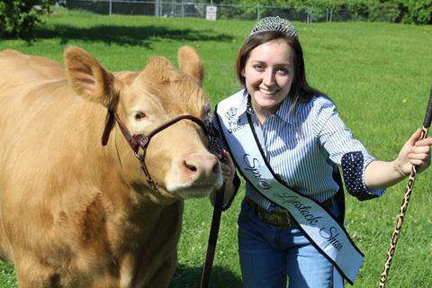 Spring High School senior, FFA Chapter President and 2020 Spring Livestock Show Fair Queen Jasmine Moynahan shows off her steer, which fetched the highest price of any animal sold during this year's online auction