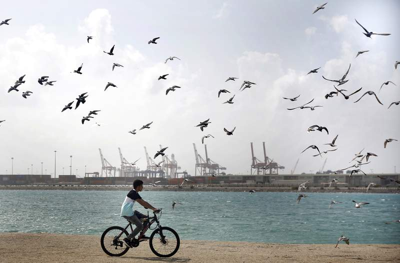 Seagulls fly as a man rides his bicycle in front of the Port on the Red Sea, in Jiddah, Saudi Arabia, Sunday, Dec. 27, 2020. (AP Photo/Amr Nabil)