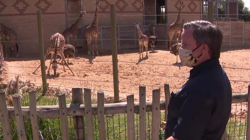 Pandemic impact on Houston Zoo