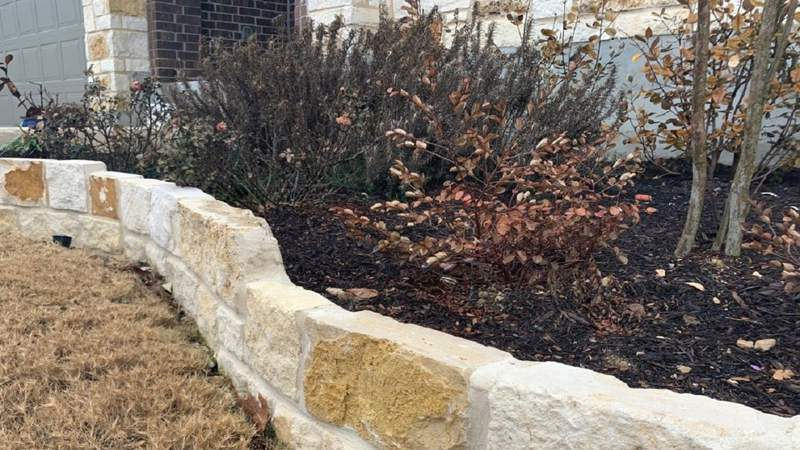 Tips to get your lawn and yard back in shape after the freeze
