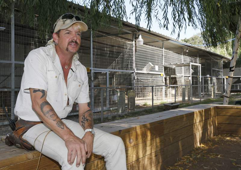 """FILE - In this Aug. 28, 2013, file photo, Joseph Maldonado-Passage, also known as Joe Exotic, is seen at the zoo he used to run in Wynnewood, Okla. A federal judge in Oklahoma has ordered the new owners of the Oklahoma zoo featured in Netflix's """"Tiger King"""" documentary to turn over all the lion and tiger cubs in their possession, along with the animals' mothers, to the federal government. U.S. District Judge John F. Heil III issued the order last week in the case against Jeffrey and Lauren Lowe and the Greater Wynnewood Exotic Animal Park based on claimed violations of the Endangered Species Act and the Animal Welfare Act. (AP Photo/Sue Ogrocki, File)"""