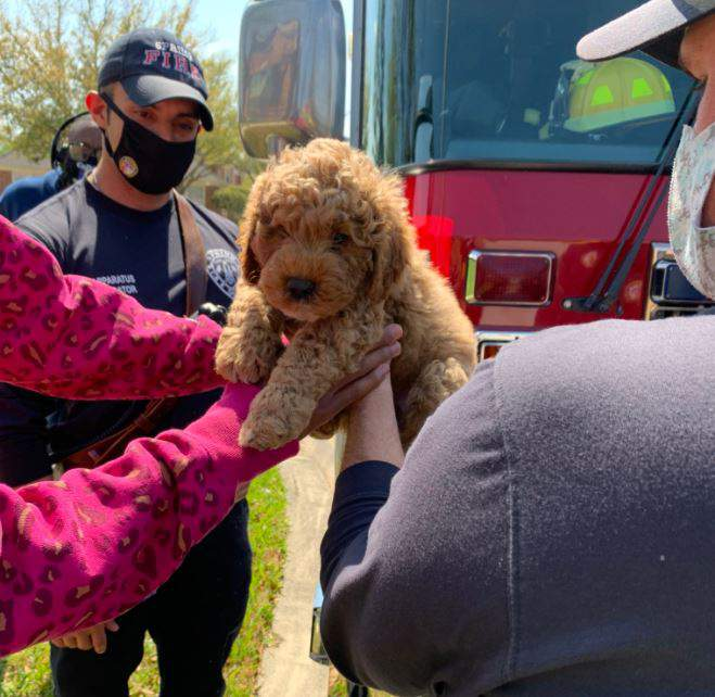 Spring Fire Department firefighters rescue a puppy stuck in pipe in Spring Lakes on March 21, 2021.