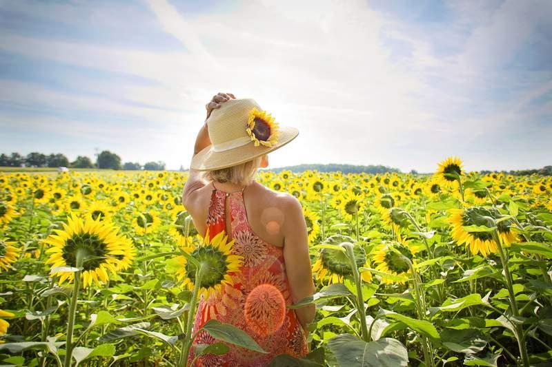 Woman at a sunflower field.