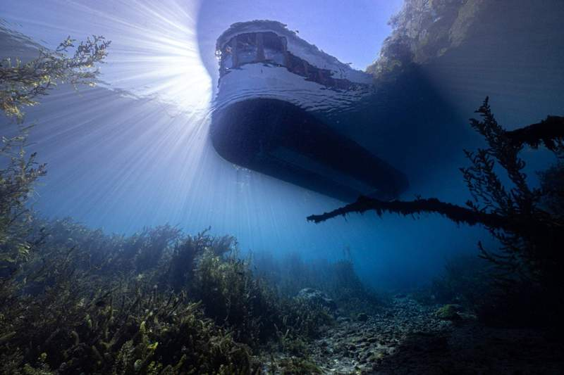 Underneath a glass-bottom boat at Spring Lake