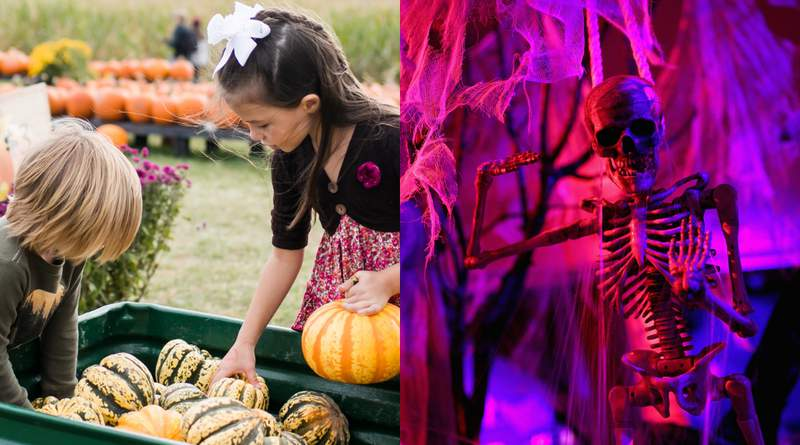 Fall festivals and Halloween plans