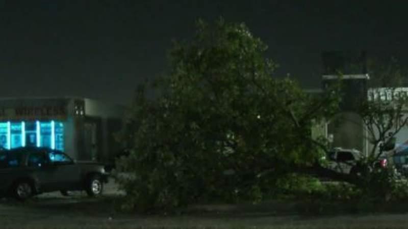 Man killed in crash where SUV crashes into tree
