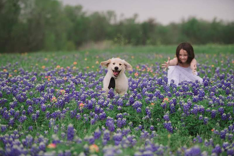 A viewer-submitted photo from bluebonnet season in Texas 2021.