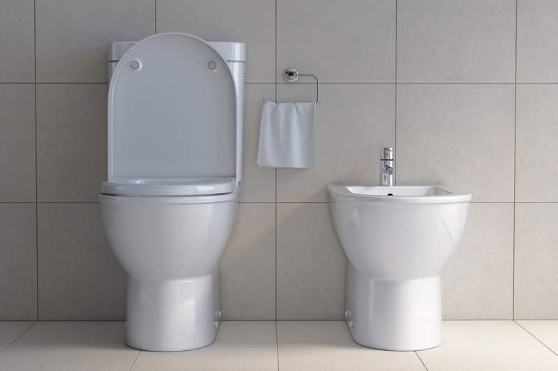 Toilet bowl and bidet in the modern bathroom. 3d illustration