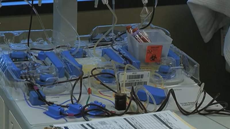 Plea for convalescent plasma to fight COVID-19