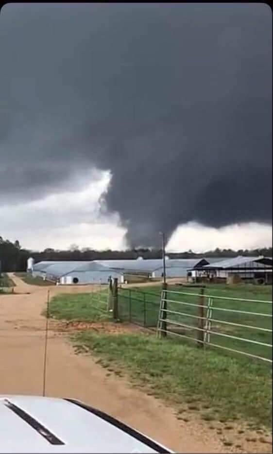 Waynesboro, MS Tornado courtesty Devon Polansky