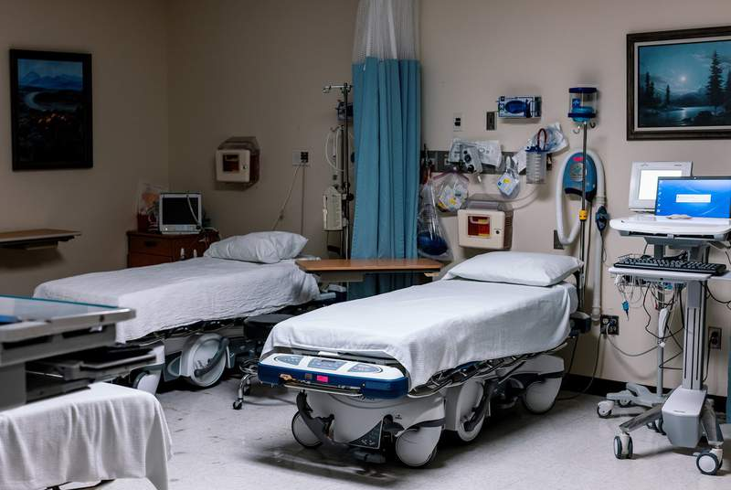 An empty emergency room at Goodall-Witcher Hospital in Clifton on August 3, 2021.
